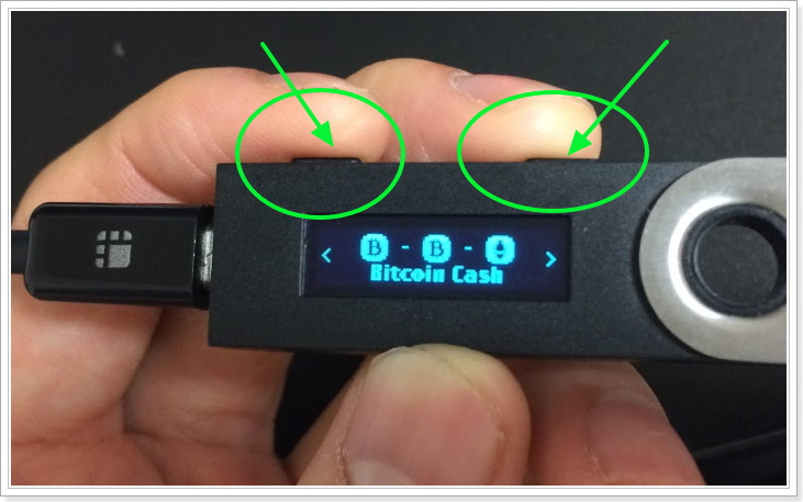 LedgerNanoSにビットコインキャッシュを保管・管理する方法