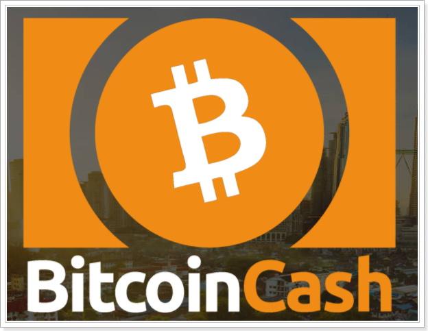 ビットコインキャッシュ(BCH)とは,投資判断